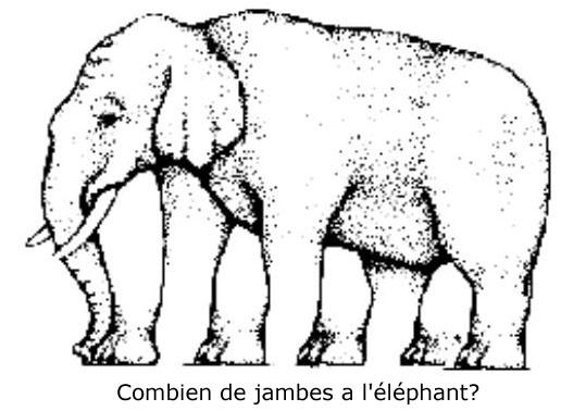¿ L'antre du Sphinx ? Elephant